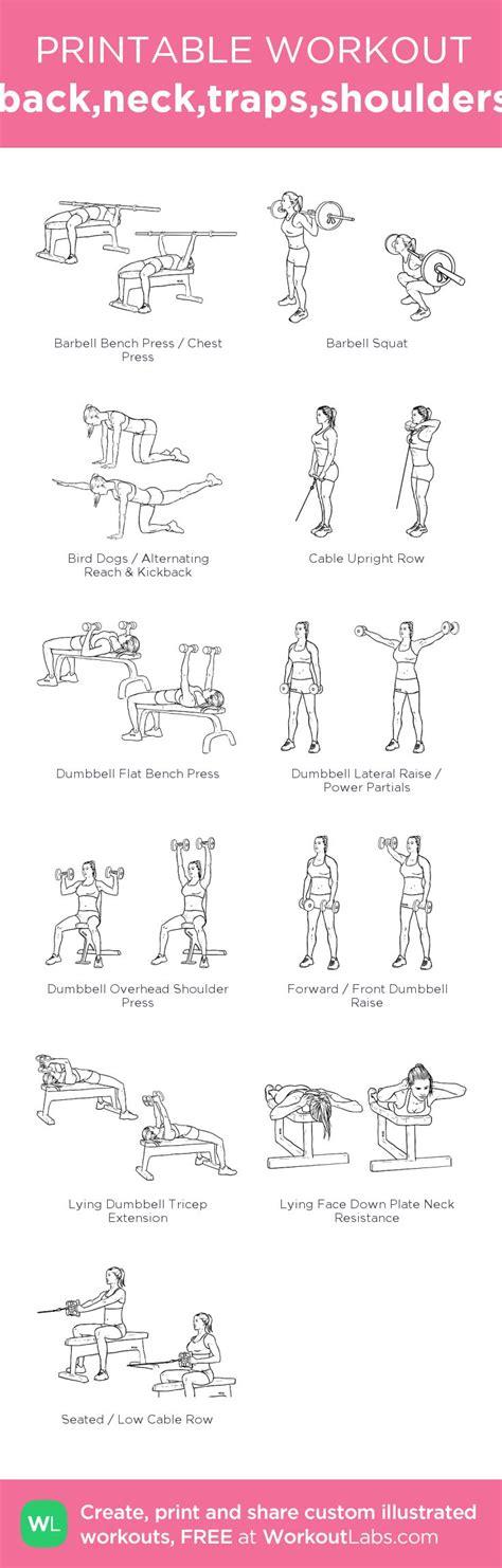 1000 ideas about traps workout on shoulder