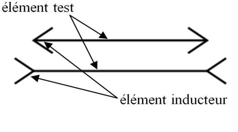 tester un inducteur tester un inducteur 28 images illusions optico g 233 om 233 triques tpe les illusions d