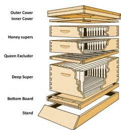 Top Bar Hive With Langstroth Frames Bee Boxes Plans Free Download Pdf Woodworking Mason Bee
