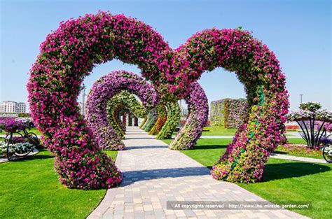Beautiful Flowers Garden In The World Dubai Miracle Garden The Most Beautiful And Largest Flower Garden In World