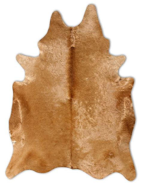 Used Cowhide Rug 59 Best Cowhide Rugs Images On