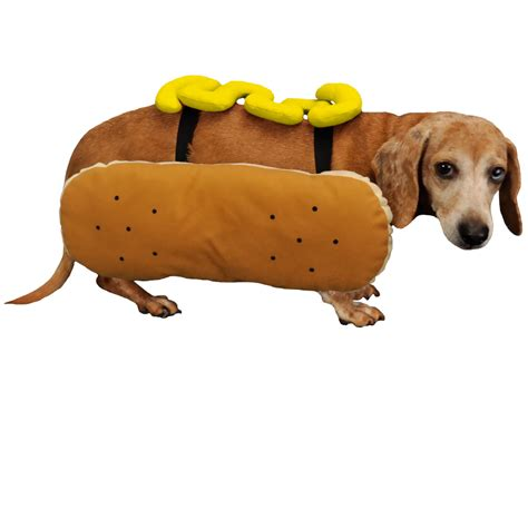 can dogs mustard otis and claude fetching fashion diggity costume mustard medium healthypets