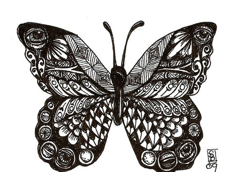 doodle pattern butterfly zentangle butterfly beautiful butterflies pinterest