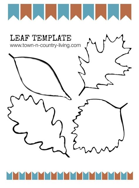 leaf paper template 1000 ideas about leaf template on templates