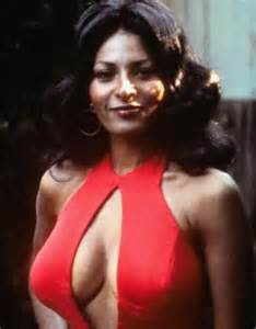 pam grier net worth   biography quotes wiki assets cars homes and more