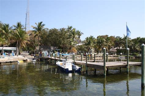 quot the pelican quot the pelican key largo cottages on the bay in