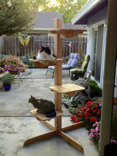 Wonderful Six New Cedar Outdoor Cat Trees In Furniture How To Keep Cats Outdoor Furniture