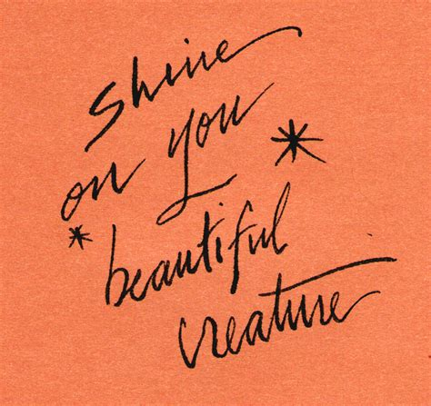 Shine On by Get Your Shine On Sheela Writes