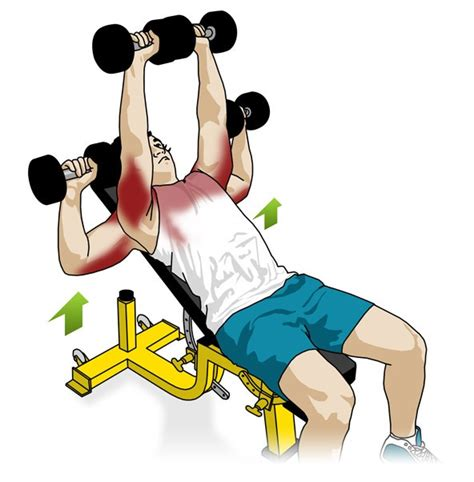 dumbbell exercises without bench incline db bench press 28 images power and strength