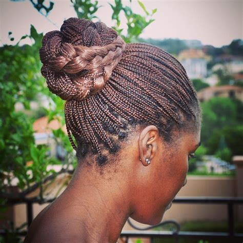 images of tiny braids the 10 most beautiful small box braid hairdos