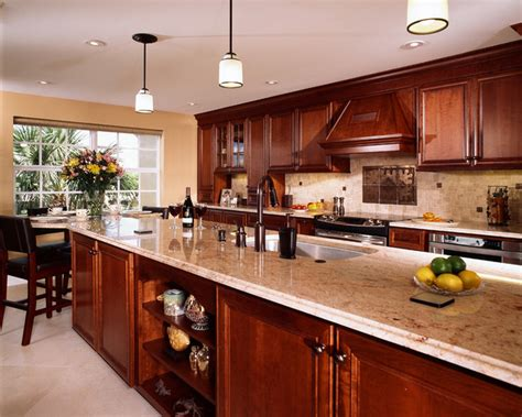 delray kitchen traditional kitchen miami by