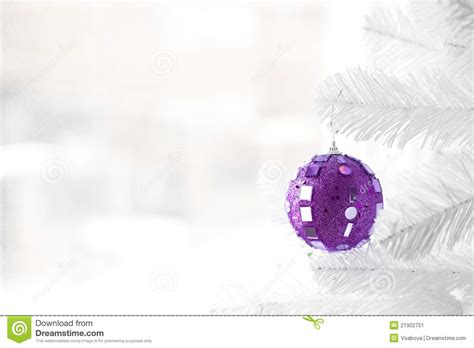 purple bauble on christmas tree stock image image 21902751