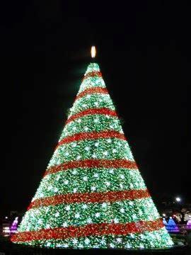 visiting the national christmas tree at night