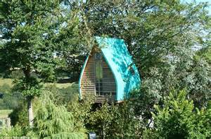 Window Ideas by Cornwall Man Builds Tree Sparrow Treehouse Then Turns It