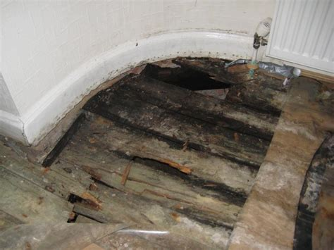 Wet Rot Issue   Dropped Floor   DIYnot Forums