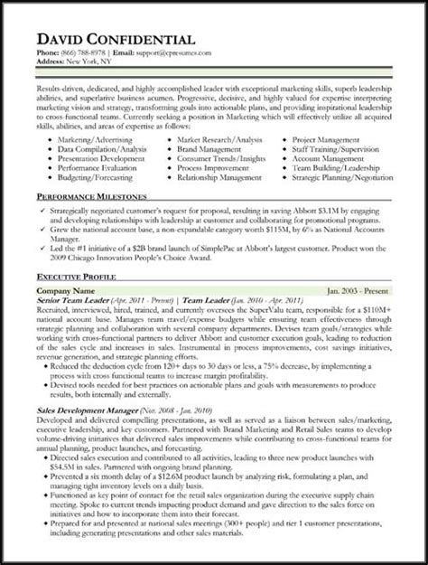 executive sle resume resume format resume format types