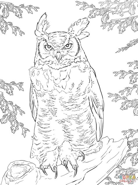 Great Horned Owl Coloring Page realistic great horned owl coloring page free printable