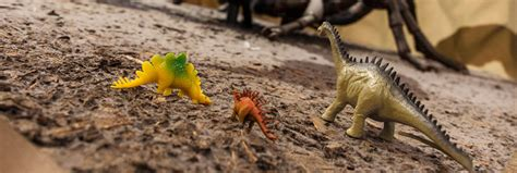 Kitchen Cabinet Pieces by Buy Dinosaur Toys Games And Clothing For Kids Natural