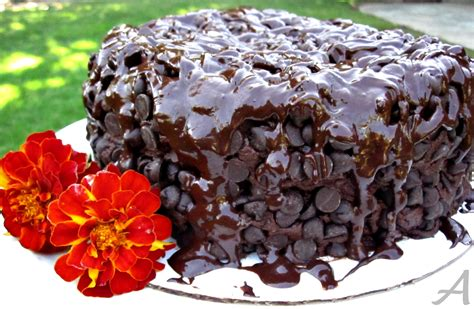 the best cakes the best chocolate cake ask