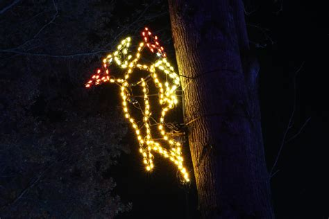 meadowlark gardens lights collection meadowlark lights pictures best