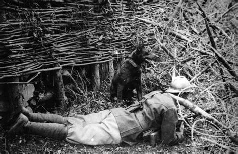 imagenes impactantes primera guerra mundial 100 fotos de la primera guerra mundial megapost