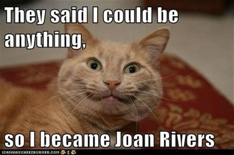 They Said I Could Be Anything Meme - they said i could be anything so i became joan rivers