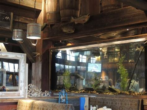 fish house branson inside picture of white river fish house branson