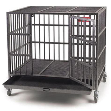 indestructible crate top indestructible crate 5 chewproof tough crates