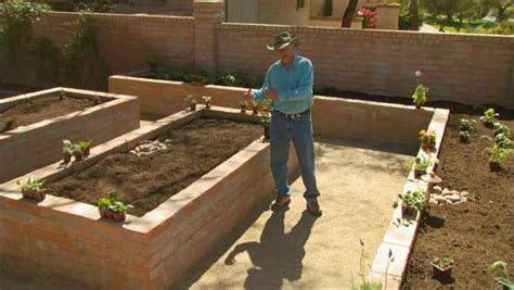 Gardening In Arizona Learn What To Plant In Raised Beds In A Desert Vegetable
