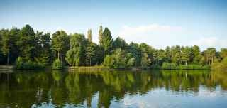 elveden forest breaks | suffolk holidays | center parcs
