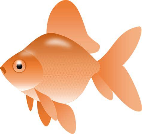 gold fish clip goldfish clip clipart best