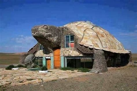 turtle house turtle house in mongolia unusual homes architecture pinterest cute photos