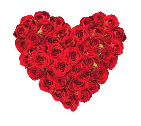 imagenes rosas san valentin enviar flores por san valent 237 n blog pensandoenflores
