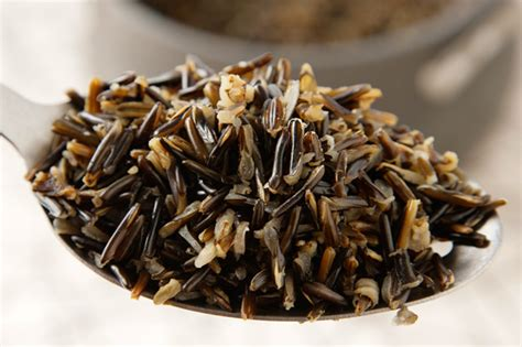 canoes meaning in telugu basic steamed wild rice recipe chow