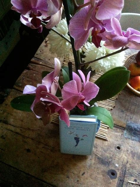 orchids on your budget pitsiunelmia pitsikirjan blogi orchids on your budget