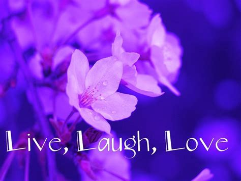 live themes love cute live laugh love quotes live laugh love wallpapers
