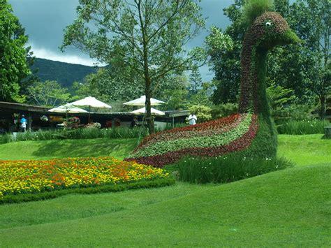 gambar keren gambar taman bunga
