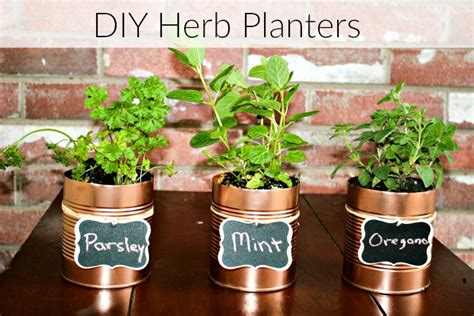 herb planter diy diy herb planters with repurposed cans consumerqueen