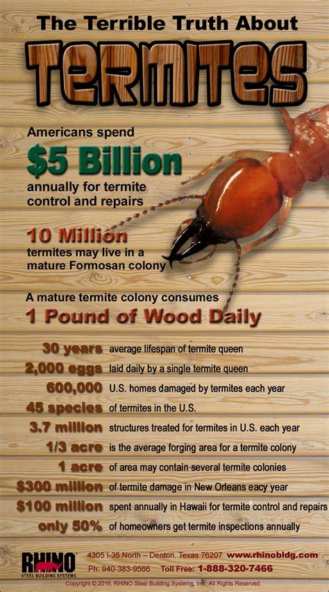 termites  eat  steel building termite proof