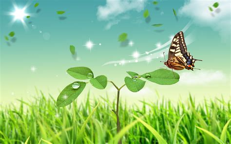 natural korean wallpaper with leaves loves butterfly natural scenery wallpaper butterfly and green plants