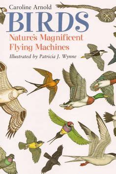 1000 images about books about birds and more on pinterest