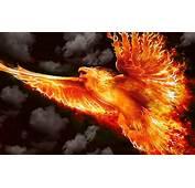 Firebird Wallpaper  WallpaperSafari