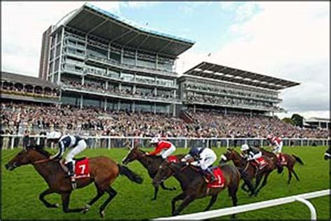 york racecourse york racecourse tickets giveaway dante meeting racing