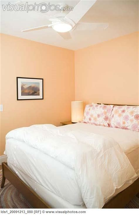 peach and white bedroom white and peach bedroom colour scheme pinterest