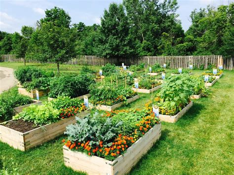 city  powell ohio community garden
