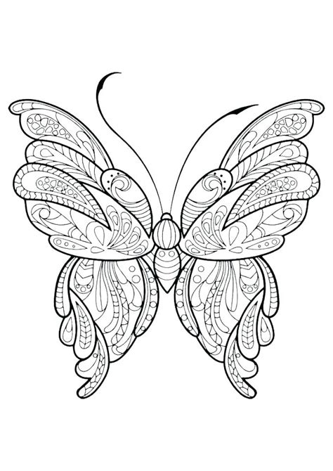 Coloring Pages Of Butterflies by Coloring Picture Of A Butterfly Butterfly Wing Outline