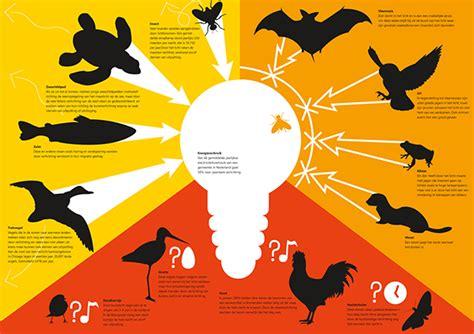 Animal Effects Dan Light light pollution on behance