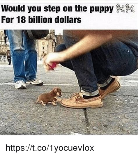 would you step on a puppy for 18 billion 25 best memes about 18 billion 18 billion memes