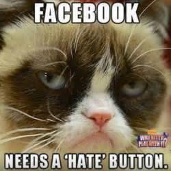 Grumpy Cat Funniest Memes - facebook needs a hate button funny grumpy cat meme picture