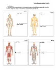 Adult cool human body system worksheet gallery images awesome 11 major